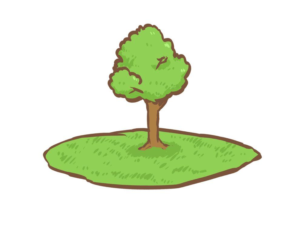 樹木葬で後悔しないために知っておくべきこと