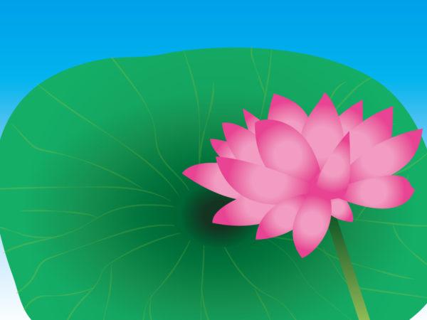 仏壇の開眼供養【曹洞宗】の4つのポイント 解説